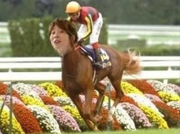 川越シェフ、競馬界に進出の面白画像