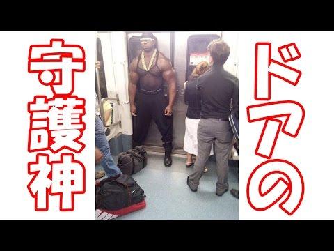 動画で面白画像!【腹筋崩壊】フフッて笑える面白画像集! #42の面白画像