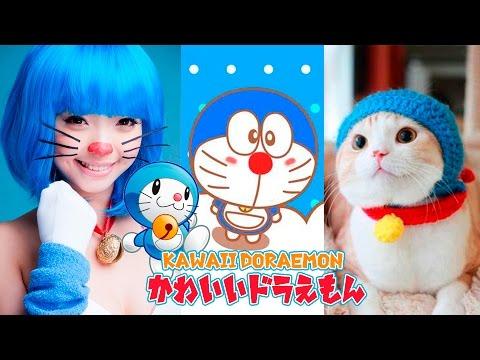 動画で面白画像!かわいいドラえもん【おもしろ画像集】kawaii doraemonの面白画像