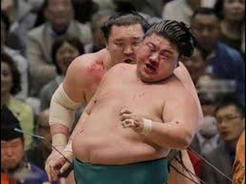 動画で面白画像!衝撃映像 ケンカ ハプニング 相撲面白画像の面白画像