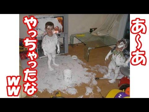 動画で面白画像!【腹筋崩壊】フフッて笑える面白画像集!自由すぎる子供たち!の面白画像