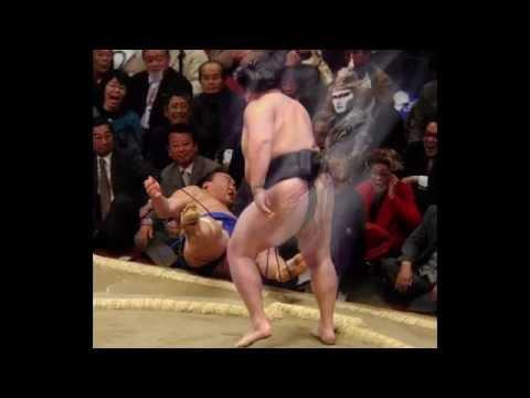 動画で面白画像!吹いたら負け おもしろ画像集 #9 相撲の面白画像