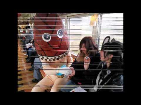 動画で面白画像!おもしろ画像電車で見かけたおもしろ光景傑作選嘘のような本当の思わず二度見してしまう衝撃写真 Sleeping On The Trainの面白画像