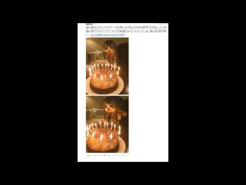 動画で面白画像!これは可愛い!猫×ケーキのおもしろ画像まとめの面白画像